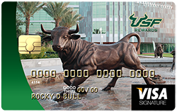credit card with bronze bull