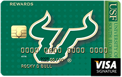 credit card with team bull logo
